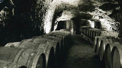 The Cellars at Roches Neuves