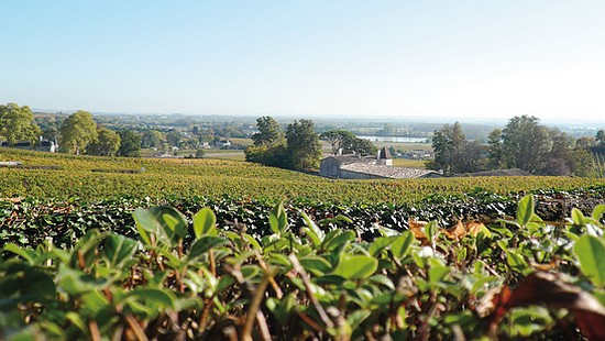 Futures 2015: Appellation Canon-Fronsac