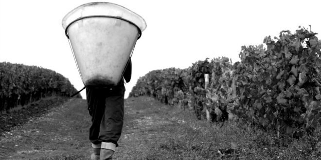 Futures 2015: Appellation Moulis