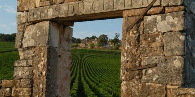 DOMAINE DU CELLIER AUX MOINES: IN THE HEART OF BURGUNDY FOR CENTURIES