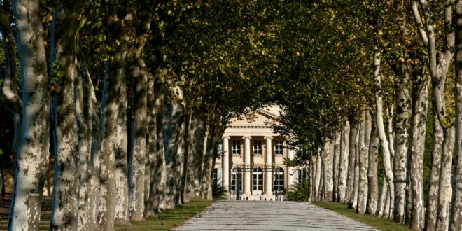 Château Margaux: A rich history and an exceptional wine
