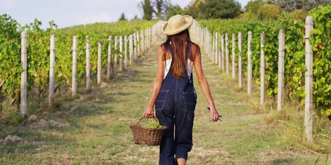 Powerful, Innovative Women in Wine