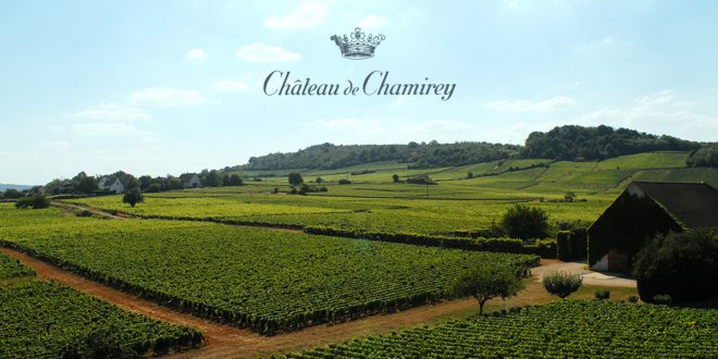 Chateau de Chamirey | Wines from the Best Terroirs of Mercurey