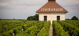 Primeurs 2016 | The 2016 Vintage at Chateau Lynch-Bages