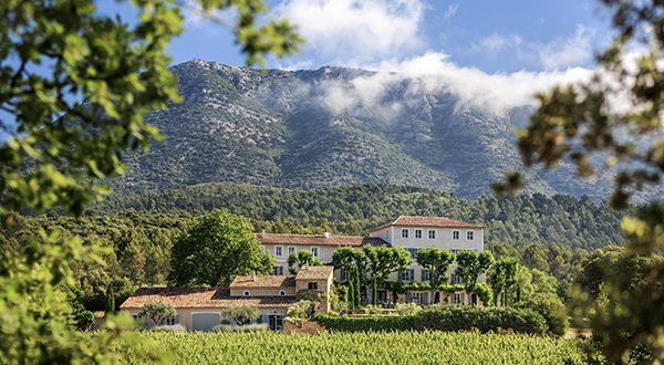 Domaine Saint Andrieu | The Rebirth of a Provence Estate